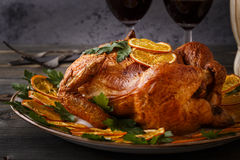 Roasted whole chicken with parsley and oranges. Stock Photography