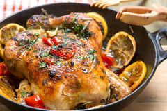 Roasted whole chicken with vegetables Royalty Free Stock Photography