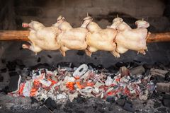 Roasted whole chickens on spit grill over charcoal Royalty Free Stock Photos