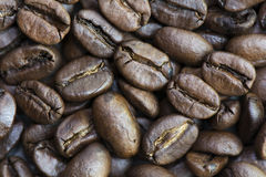 Roasted whole coffee bean background. Abstract roasted whole coffee bean background Stock Image