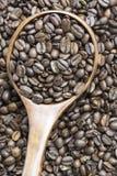 Roasted Whole Coffee Bean. Medium roasted whole coffee bean in wooden spoon on coffee bean background Stock Photos