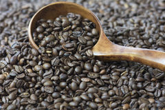 Roasted Whole Coffee Bean Selected focus. Medium roasted whole coffee bean in wooden spoon on coffee bean background Royalty Free Stock Photos