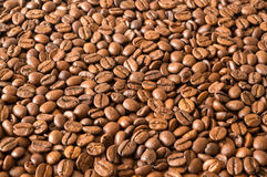 Roasted Whole Coffee Beans Royalty Free Stock Images