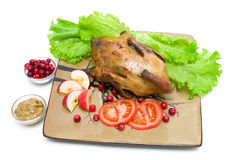 Roasted wild duck on a plate - white background. royalty free stock image