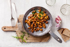 Roasted wild mushrooms in pan. On white textured background Royalty Free Stock Photography