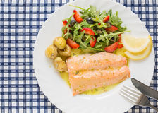 Roasted wild salmon fillet (low fat)  with salad Royalty Free Stock Images