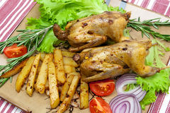 Roasted woodcocks with vegetables and herbs Stock Image
