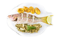 Roasted Yellow Tail Snapper Stock Image