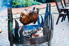 Roasting barbecue is prepared of a ram, lamb or sheep Stock Photos