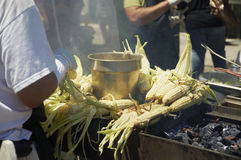 Roasting corn. Corn on the cob being roasted on a barbecue Royalty Free Stock Photography
