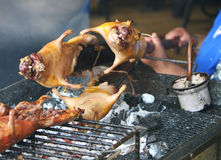 Roasting Guinea Pigs Royalty Free Stock Photography