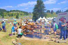 Roasting lambs at Rozhen Fair,Bulgaria Royalty Free Stock Images