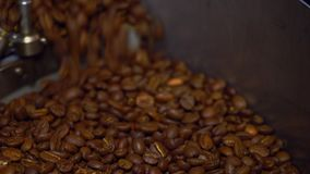 Cooling coffee beans after roasting. Roasting machine, close-up. Roasting machine, freshly roasted coffee beans rotating to cool of stock video footage