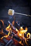 Roasting Marshmallow. S over a Campfire Stock Photos