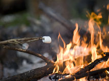 Roasting Marshmallow Royalty Free Stock Photography