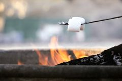 Roasting marshmallows at the beach Stock Photo