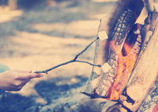 Roasting Marshmallows Instagram Style. Person roasting marshmallows on a stick over a campfire while camping with Instagram style filter Stock Images