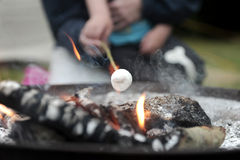 Roasting marshmallows Stock Photography
