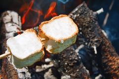 Roasting marshmallows over an open campfire. Close up royalty free stock image