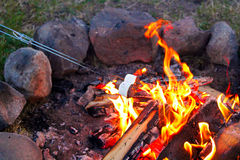 Roasting marshmallows for smores over a colorful campfire Stock Images