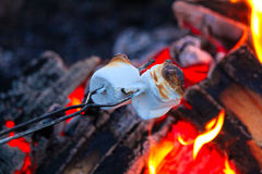 Roasting marshmallows for smores over a colorful campfire.  Stock Photography