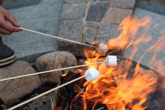 Roasting Marshmallows. Takes in hands roasted on campfire marshmallow candies close up image Stock Photography