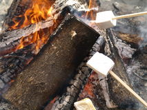 Roasting Marshmellows Royalty Free Stock Image