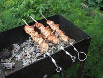 Roasting meat. Kebab royalty free stock photo