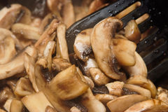 Roasting mushrooms Royalty Free Stock Photos