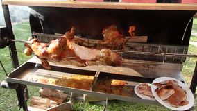 Roasting piglet on the split firewood stock video