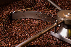 Roasting process of coffee, production. Roasting process of coffee, screening and cooling in the hopper Stock Images