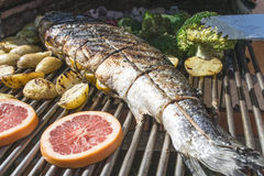Roasting salmon fish on grill Royalty Free Stock Photography