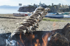 Roasting sardines on the costa del sol Royalty Free Stock Images