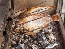 Roasting Tilapia Fish with salt Stock Photography