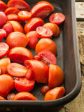 Roasting Tomatoes Royalty Free Stock Image