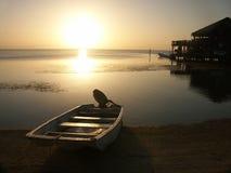 roatan solnedgång för ö Arkivbilder