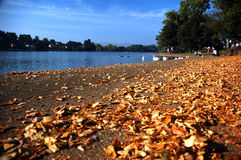 Roath lake. Autumn roath lake park in Cardiff stock image