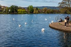Roath Park, Cardiff, Wales Stock Photography