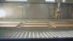Robô de pintura de madeira automatizado em uma instalação de produção da mobília video estoque