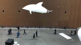 Robô do golfinho do voo no Tóquio video estoque