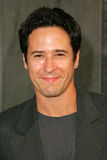 Rob Morrow Royalty Free Stock Image