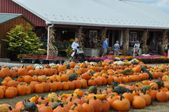 Roba Family Farms in North Abington Township in Pennsylvania Stock Image