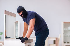 The robber wearing balaclava stealing valuable things Royalty Free Stock Image