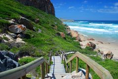 Robberg Marine Protected Area Bahía de Plettenberg Cabo occidental Viñedo famoso de Kanonkop cerca de las montañas pintorescas en Imágenes de archivo libres de regalías