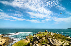 Robberg nature reserve, Garden route, South Africa landscape Stock Photography