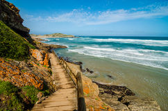 Robberg nature reserve, Garden route, South Africa landscape. Robberg nature reserve wooden boardwalk path along peninsula coast by the indian ocean, Garden stock photos