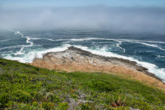 Robberg nature reserve Royalty Free Stock Image