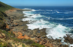 Robberg nature reserve Royalty Free Stock Images