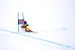 Robbie Dixon - Fis World Cup Royalty Free Stock Images