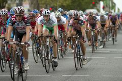 Robbie McEwan Royalty Free Stock Photo